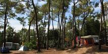 Camping LES PINEDES DE LA CAILLAUDERIE - Saint-Jean-de-Monts