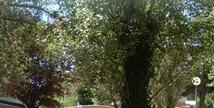 Camping LA FONTECLOSE - Notre-Dame-de-Riez