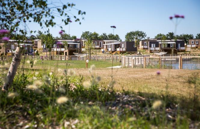 Camping Yelloh! Village LE PIN PARASOL 26 - La Chapelle-Hermier