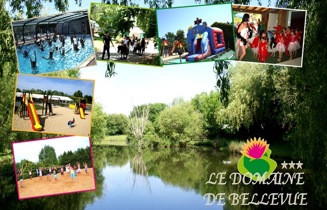 Camping DOMAINE DE BELLEVUE 2 - Saint-Christophe-du-Ligneron