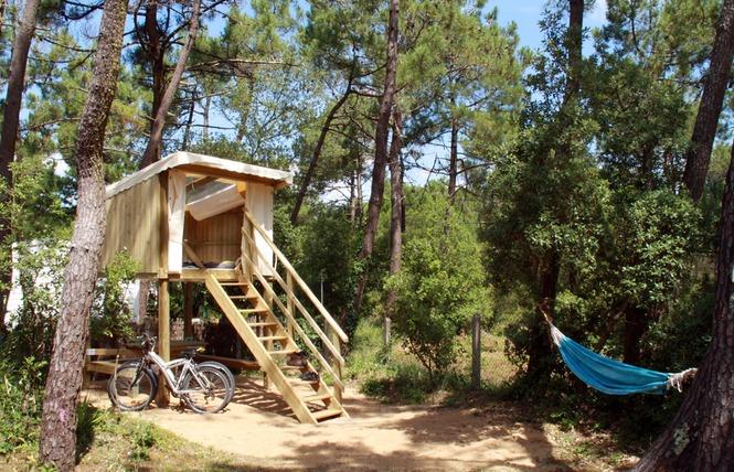 Camping LES PINEDES DE LA CAILLAUDERIE 10 - Saint-Jean-de-Monts