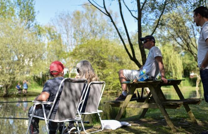 Camping DOMAINE DE BELLEVUE 4 - Saint-Christophe-du-Ligneron