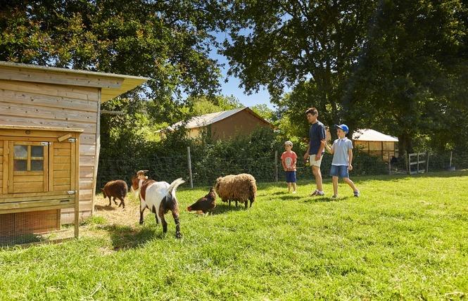 Camping Flower DU LAC DE LA CHAUSSELIERE 9 - La Guyonnière