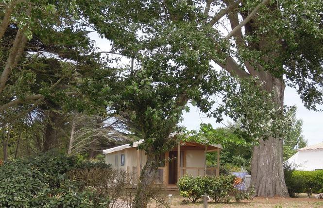 Camping Municipal DE L'ILE D'YEU 14 - L' Île-d'Yeu