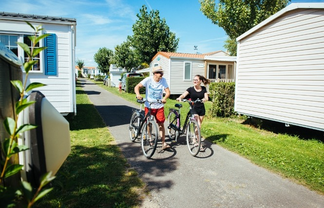 Camping LES DINOSAURES 8 - Talmont-Saint-Hilaire