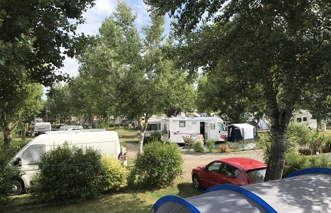 Camping LA GRANDE VALLEE 8 - La Tranche-sur-Mer