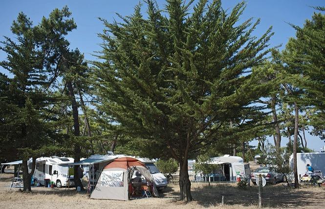 Camping HUTTOPIA NOIRMOUTIER 7 - Noirmoutier-en-l'Île