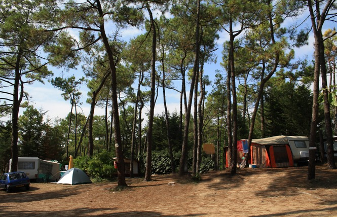 Camping LES PINEDES DE LA CAILLAUDERIE 8 - Saint-Jean-de-Monts