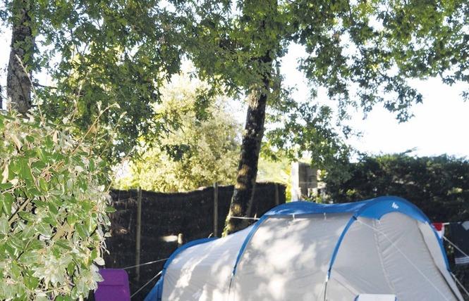 camping la pomme de pin campings en vend e. Black Bedroom Furniture Sets. Home Design Ideas
